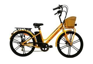 Электровелосипед Pioneer Neoclassic (2019)