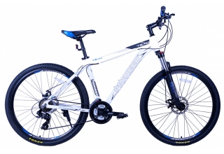 Велосипед Pioneer Team (2019)